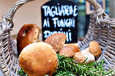 Porcini mushrooms — Stock Photo