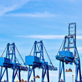 Blue cargo cranes at Sea port — Stock Photo