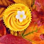 Cupcake — Stock Photo #49891373