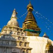 Buddha Stupa — Stock Photo