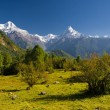 annapurna mountain range — Stock Photo