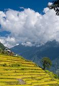Annapurna mountain range — Stock Photo