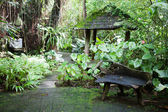 In Botanical garden, Bali — Stock Photo