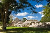 Edzna - ancient pyramid near by Campeche, Mexico — Stock Photo