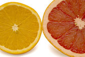 Grapefruit and oranges on a white background — Stock Photo