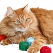 Playful red cat is playing with a ball of thread — Stock Photo