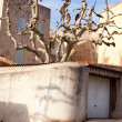 Interesting mediterraneantree and a house in Cassis — Stock Photo