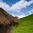 Thatched roof against a blue sky — Stockfoto