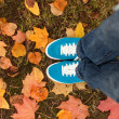 Blue sneakers on the autumn leaves — Stock Photo