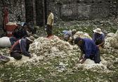 Herders in de georgische dorp — Stockfoto