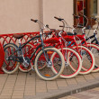 Stock Photo: Rental of bicycles
