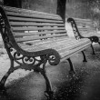 bench in winter and falling snow, black-white — Stock Photo