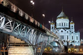 Cathedral in Moscow night in winter — Stock Photo