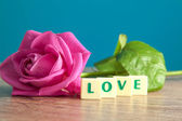 The word love and pink roses — Foto Stock