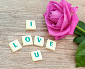 The word love and pink roses — Stockfoto