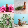 Bottles with organic essential oils — Stock Photo