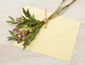 Bouquet of wild flowers and an envelope — Foto Stock