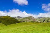 Stunning beautiful bright summer landscape in mountains — Stock Photo