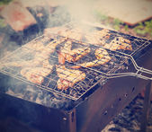 Outdoor barbecue, grilled chicken wings — Stock Photo
