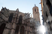 Gothic cathedral in the old town in Barcelona — Stok fotoğraf