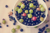 Berries of black currant and gooseberry green in a white bowl, t — Stock Photo
