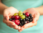 Different bright berries in female hands — Stock Photo