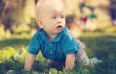 Funny little boy crawling on the grass in the park — Photo
