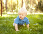 Funny little boy crawling on the grass in the park — Foto de Stock