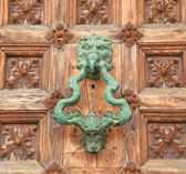 Part of a door of old castle. Wood and metal  — Stock Photo