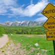 Caution: Rough Road Sign in the San Juan Mountains in Colorado — Stock Photo