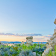 Tufa Formations at Mono Lake outside of Yosemite National Park a — Stock Photo