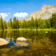 Stock Photo: Tioga Lake, Yosemite National Park