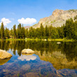 Tioga Lake, Yosemite National Park — Stock Photo #28668037