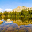 Tioga Lake, Yosemite National Park — Stock Photo #28668107