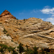 Rock formations at Zion National Park. — Stock Photo