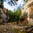 Scenery from The Narrows hike at Zion National Park. — Stock Photo