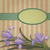 Blueflag floral frame — Stock Vector