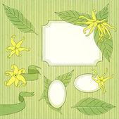 Ylang-ylang flower set — Stock Vector