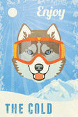 Winter Poster with Husky — Vector de stock