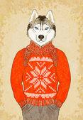 Husky Dog Wears Jacquard Sweater — Stock Vector