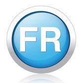 FR silver blue button design — Stock Vector