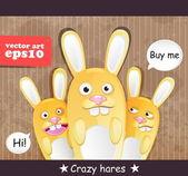 疯狂野兔 — 图库矢量图片