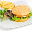 Burger and fries — Stock Photo #16316425