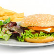 Burger and fries — Stock Photo #16316717