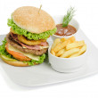 Burger and fries — Stock Photo