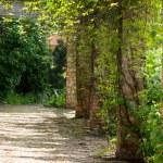 緑の木 々の間のれんが造りの家のテラス — ストック写真