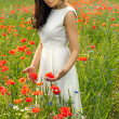 Beautiful young brunette girl wearing white summer dress in poppy filed — Stock Photo #27915219