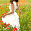 Beautiful young brunette girl wearing white summer dress in poppy filed — Stock Photo #27915227