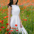 Beautiful young brunette girl wearing white summer dress and flower chaplet in poppy filed — Stock Photo #27915237