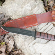 Hunting knife with leather case — Stock Photo